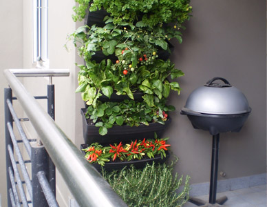Wallgarden Vertical Garden System Turn A Wall Into A Garden